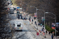 (6) Aerial view of Wright Street and bicycle lane.